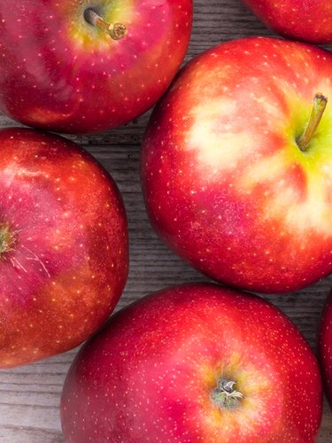 Apples - Find Fresh Farm Markets and Groceries in NJ