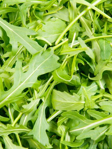 Arugula - Find Fresh Farm Markets and Groceries in NJ
