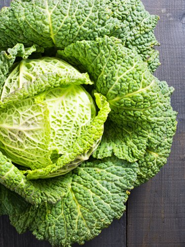 Cabbage - Find Fresh Farm Markets and Groceries in NJ