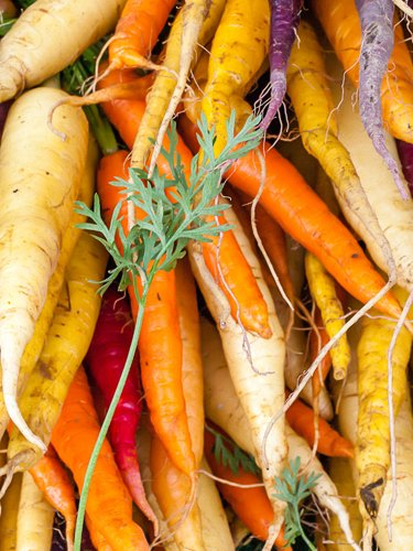 Carrots - Find Fresh Farm Markets and Groceries in NJ
