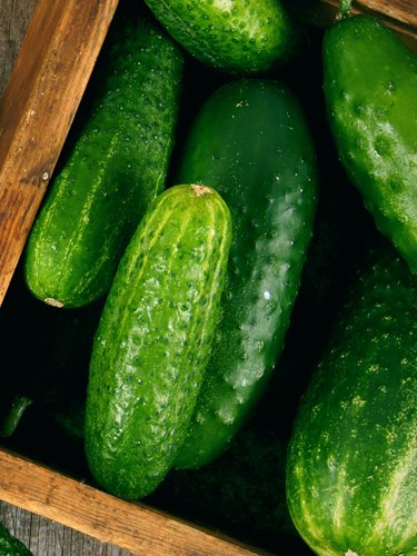 Cucumbers - Find Fresh Farm Markets and Groceries in NJ