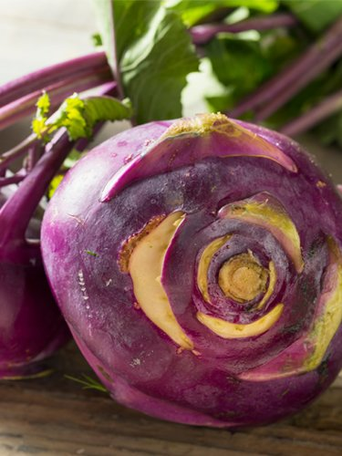 Kohlrabi - Find Fresh Farm Markets and Groceries in NJ