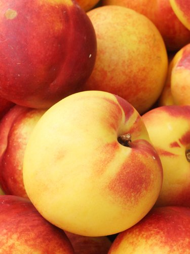 Nectarines - Find Fresh Farm Markets and Groceries in NJ