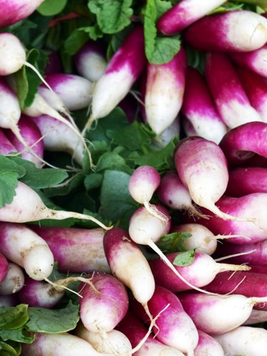 Radish - Find Fresh Farm Markets and Groceries in NJ