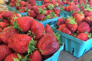 Find Fresh Produce in NJ
