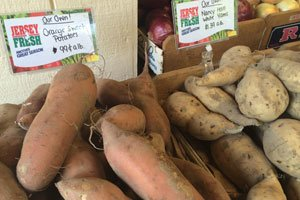 Sweet Potatoes - Find Fresh Farm Markets and Groceries in NJ