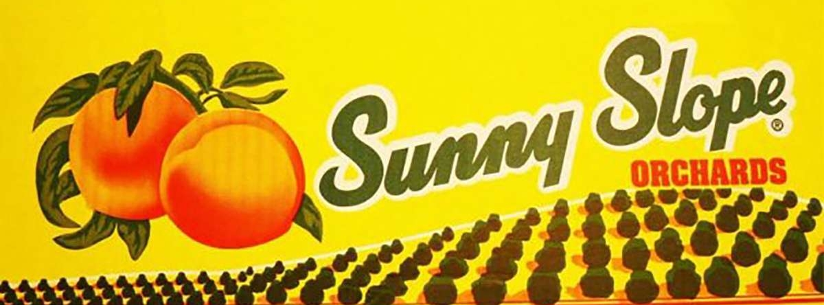 Sunny slope farms of nj find jersey fresh pin it on pinterest publicscrutiny Images